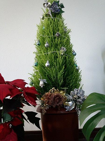クレストでクリスマスツリー
